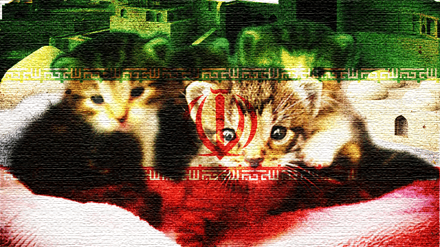 The Domestic Kitten hacking group has a threat to the Iranian regime